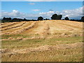 NY0883 : Arable farming by Norma Foggo
