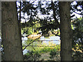 TQ5583 : Fishing Lakes, Warwick Lane, Rainham by John Winfield