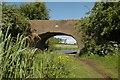 SO9158 : Worcester & Birmingham Canal, Oddingley by Dave Bushell