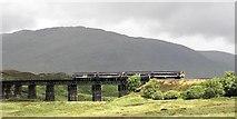 NN4258 : Rannoch Viaduct by Wim Kegel