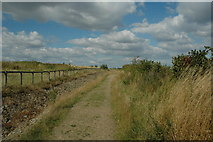 SJ5786 : Footpath to nowhere... by andy