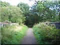 SP2874 : Kenilworth Junction - Berkswell railway Line by David Stowell
