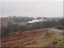 SE8499 : NYMR near Moorgates by Alan Fleming