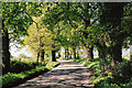 ST0409 : Uffculme: road near Bradfield by Martin Bodman