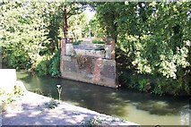 SU9946 : Demolished bridge over the River Wey by Ron Strutt