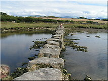 SH4464 : Stepping Stones, Afon Braint by Dave Dunford