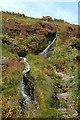 SC4187 : Laxey Valley - Isle of Man by Jon Wornham