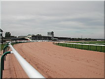 SK7352 : The stands, Southwell Racecourse by Tom Courtney