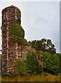 C6540 : Northburgh Castle by Corinna Schleiffer