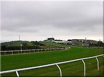 TQ3305 : Towards the finishing line, Brighton Racecourse by Simon Carey