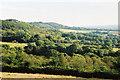 ST1106 : Broadhembury: south to Hembury by Martin Bodman