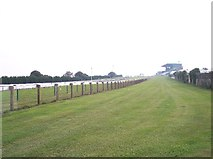 TQ3305 : Pipped at the post - Brighton Racecourse. by Bob Embleton