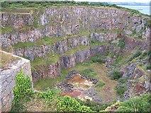SX9456 : Berry Head Quarry by Garth Newton