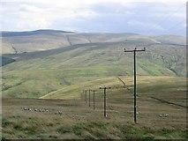 NN9205 : Wether Hill by Richard Webb
