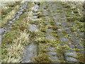 SD9717 : Blackstone Edge Roman Road by John Illingworth