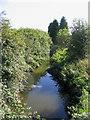TQ6086 : Mar Dyke River at Bury Farm, Upminster by John Winfield