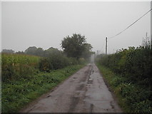 SK7059 : Estate road to Dilliner Wood Farm by Tom Courtney