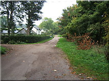 TQ1956 : Bridleway at 30 Acre Barn by Roger Miller