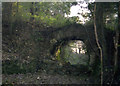 SX4373 : Disused  railway bridge, Wheal Emma, 1979 by Crispin Purdye