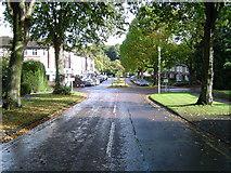 TQ0893 : Rickmansworth: Main Avenue, Moor Park by Nigel Cox