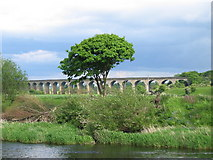 SE2645 : Arthington Viaduct by Roger Crowther