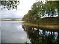 NX6572 : Cadger's Loop, Loch Ken by Kirsty Smith