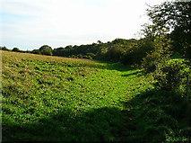 TQ3710 : Bridleway beneath Balmer Down by Simon Carey