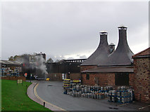 NT6678 : Belhaven Brewery by John Darcy
