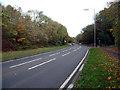 TQ4662 : A21 Sevenoaks Road near Pratt's Bottom BR6 by Philip Talmage