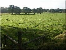 TG1408 : Algarsthorpe Farm, Easton by Katy Walters