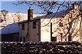 NY7446 : Foreshield Farm by John Holmes