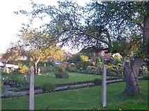 SO8259 : Hallow Heath by Bob Embleton