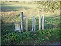 TQ8262 : Cattle-proof footpath gate by Penny Mayes