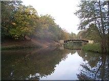 SU9948 : North Downs Way footbridge over River Wey by Keith Rose