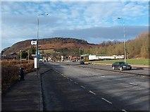 NS4274 : Dumbuck Hill, Dunbartonshire by Andrew McEwan
