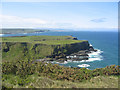 C9444 : Headland west of Giant's Causeway by Ron Goodhew