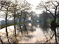 SD4751 : Lancaster Canal at Forton by David Medcalf