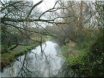 TQ0477 : River Colne by Ray Stanton