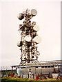 SX1959 : Bury Down BT-Tower by David Neale