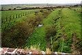 SX1489 : Lesnewth: North Cornwall railway formation by Martin Bodman