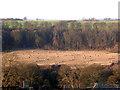 NZ1315 : Tees Valley, Ovington, near Barnard Castle by Oliver Dixon