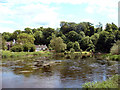 SK4127 : Kings Mills from the north bank of the River Trent by Malcolm Reeve