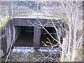 NY2225 : When is a bridge not a bridge. by John Holmes