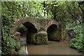 ST7388 : Sturt Bridge by Dave and Vicky