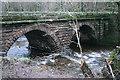 NY0506 : Stakes Bridge by Bob Jenkins