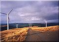 NS6102 : Turbine Alley by bill copland