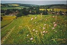 SU8712 : South of Singleton by Colin Smith
