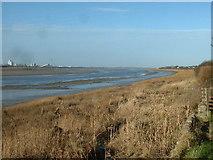 SD3642 : River Wyre from Wardleys by David Medcalf