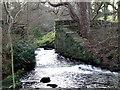 SH5868 : River at Glasinfryn by Nigel Williams