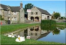 SK1260 : The Duck Pond, Hartington, Derbyshire. by Stephen Elwyn RODDICK